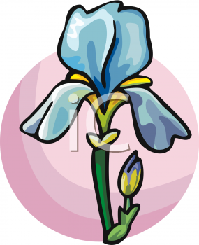285x350 Iris Clipart Cartoon