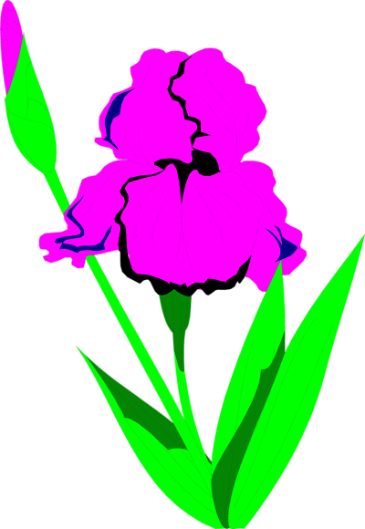 400x580 Keywords Clip Art, Flowers, Clipart Panda