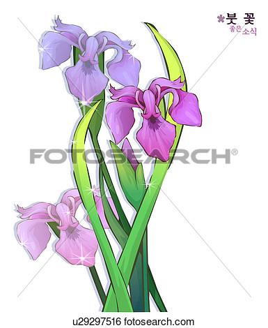 385x470 Iris Flower Clip Art