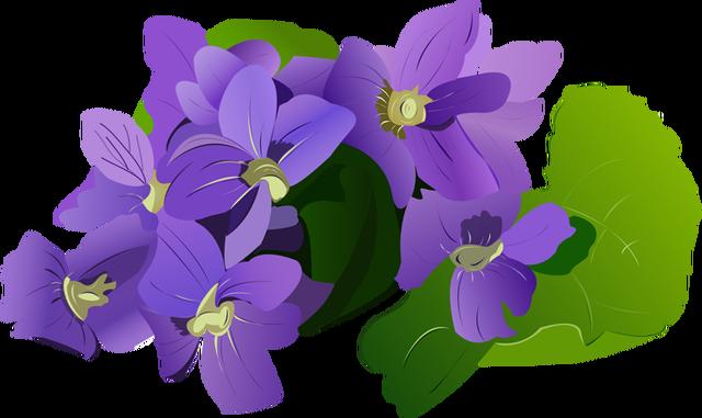 640x381 Iris Flower Clip Art