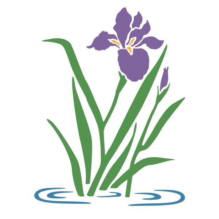 700x700 Iris Svg, Botanical Svg, Rose Svg, Pansy, Herbs, Garden, Home