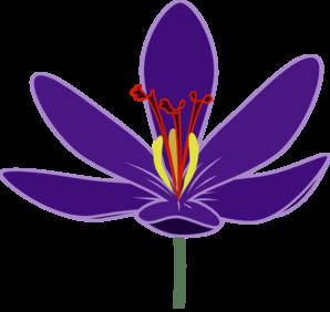 298x282 Purple Crocus Blossom Clip Art