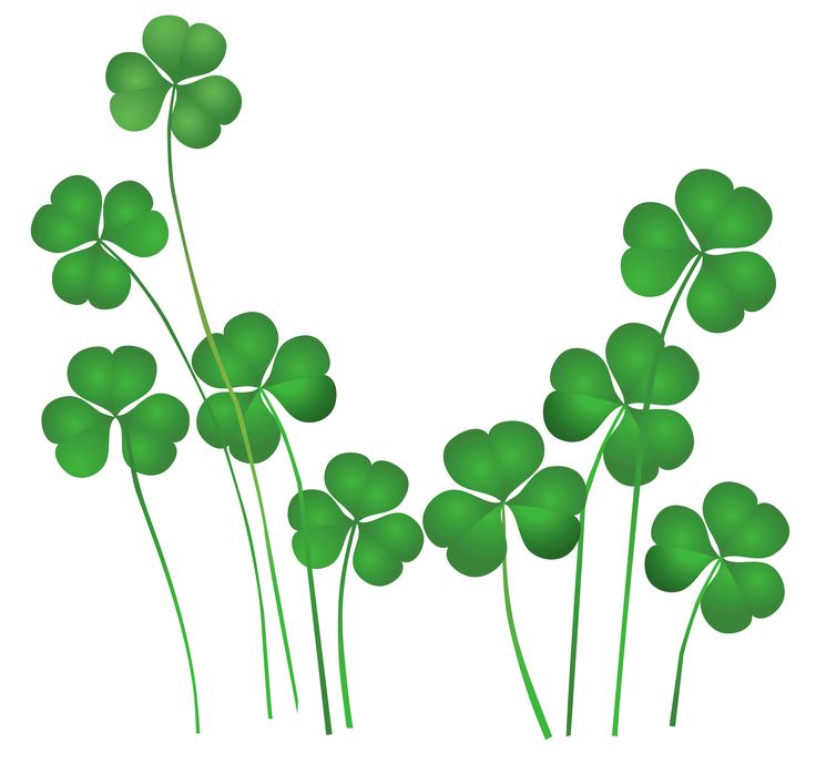 736x688 St Patricks Day Shamrocks Decor PNG Clipart co ba la