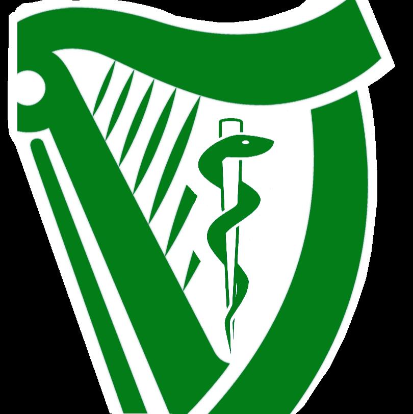 810x812 Irish Medical Football