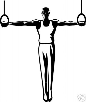 338x400 Gymnastics Clipart Iron Cross