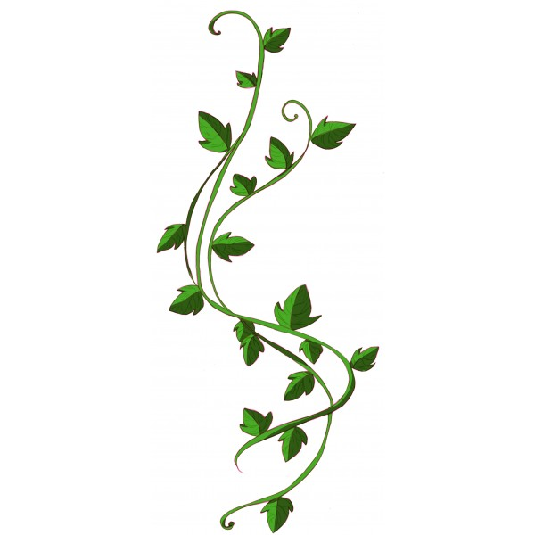 Ivy Clipart | Free download on ClipArtMag