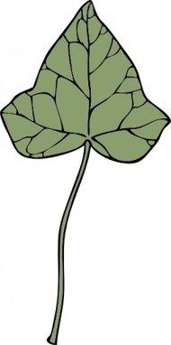 190x382 Ivy Vine Clip Art Download 167 Clip Arts