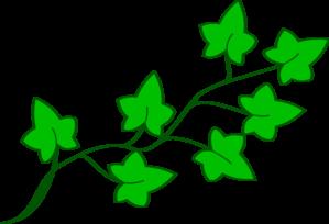 299x204 Ivy Vine Clip Art