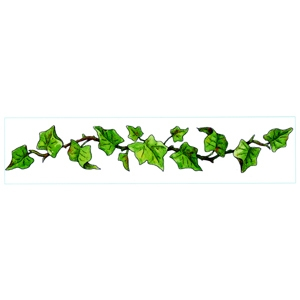 300x300 Ivy Clipart Frame