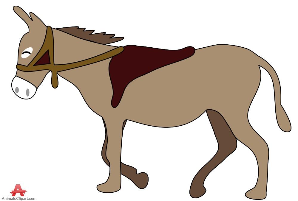 999x675 Skeleton Clipart Donkey