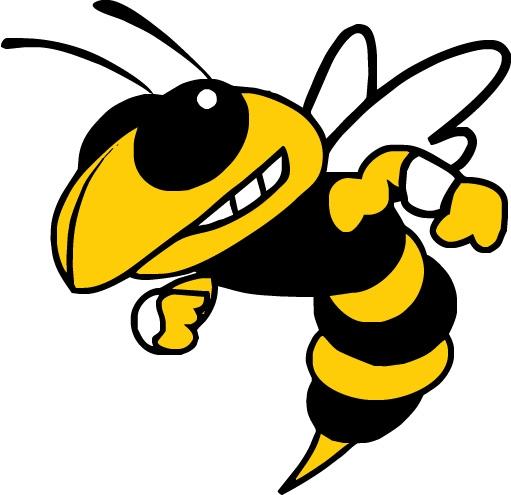 511x495 Yellow Jacket Mascot Clip Art Starkville High School Senior