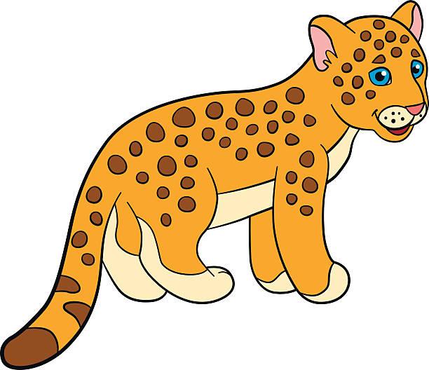 612x528 Jaguar Clipart Cub
