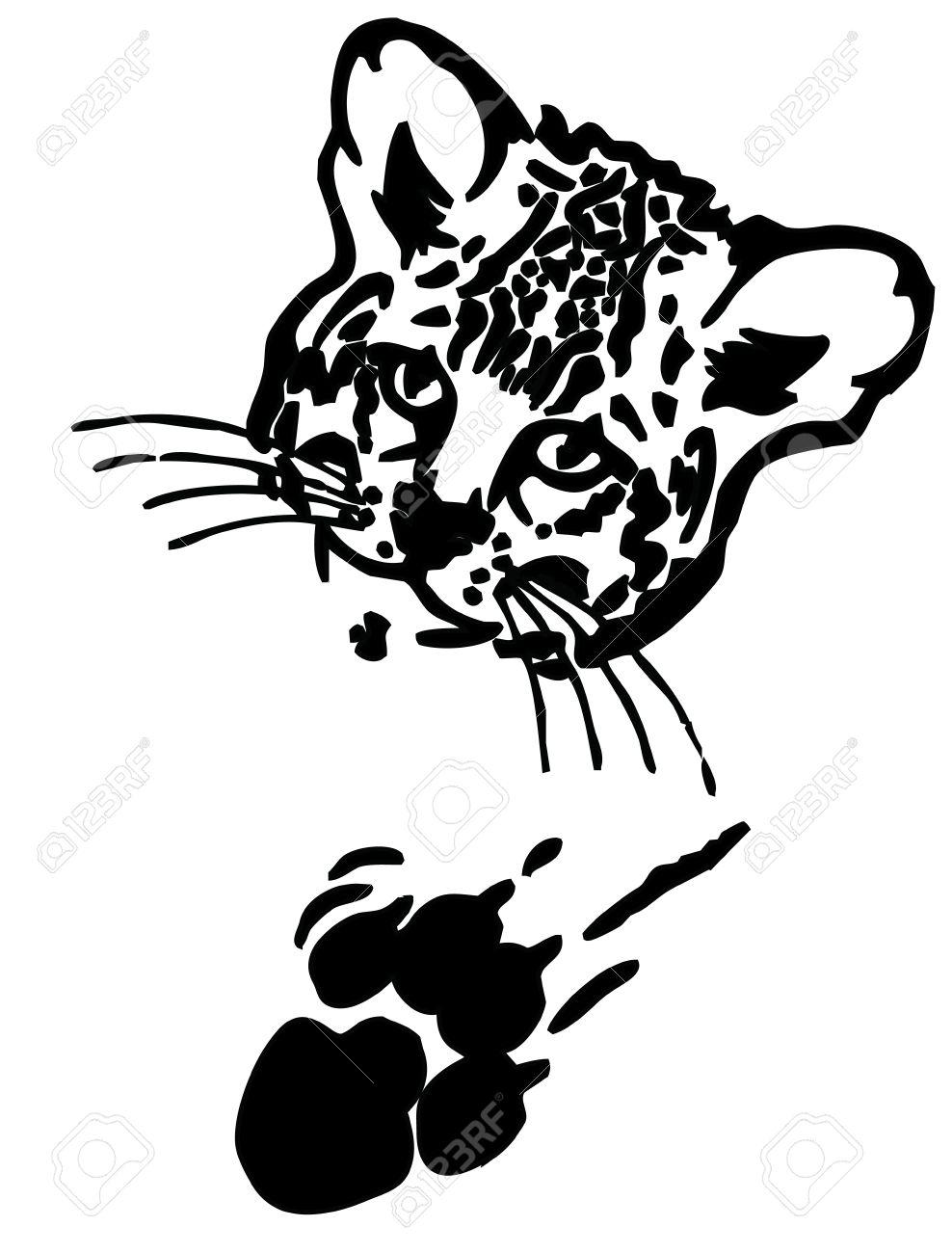 988x1300 Leopard Puma Or Jaguar Face Realistic Graphics With Print