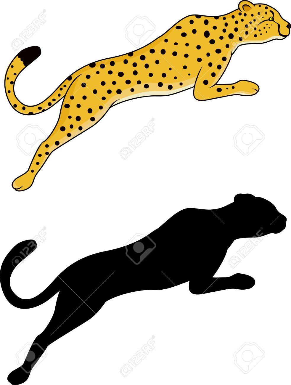 983x1300 White Tiger Clipart Jaguar
