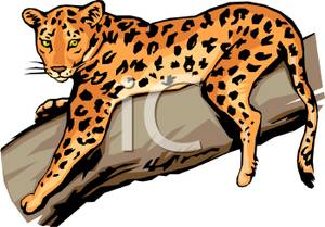 300x209 Art Image A Jaguar Resting On A Tree Branch