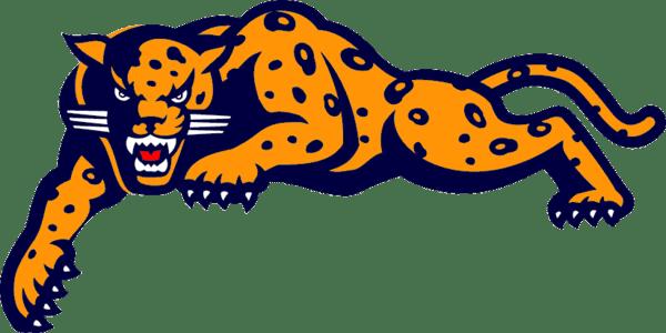 600x300 Jaguar Cartoon Pictures Matatarantula
