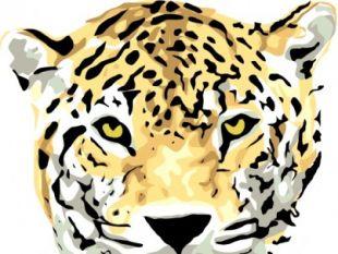 310x233 Jaguar Free Vectors Ui Download