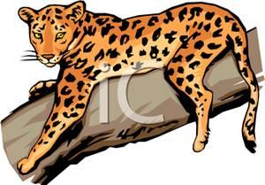 300x209 Jaguar Clip Art Free Clipart Panda
