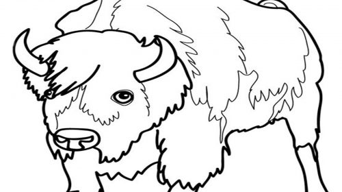 500x280 Land Animals Coloring Pages Luxury Jaguar Coloring Pages Free