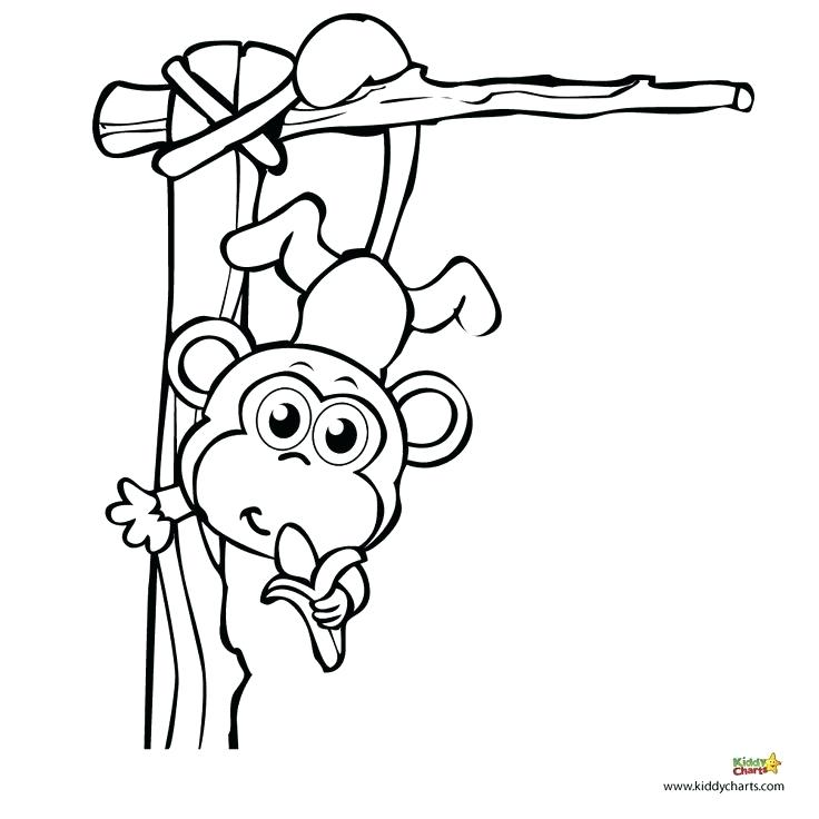 736x736 Monkey Coloring Pages A For Your Best Images On Cartoon Cowboys