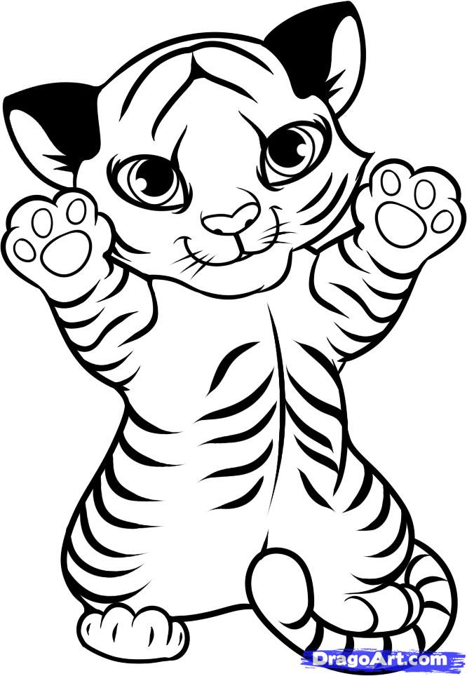 666x964 Coloring Pages Of Cute Baby Tigers