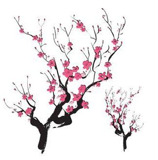 324x328 Cherry Blossom Clipart Japan