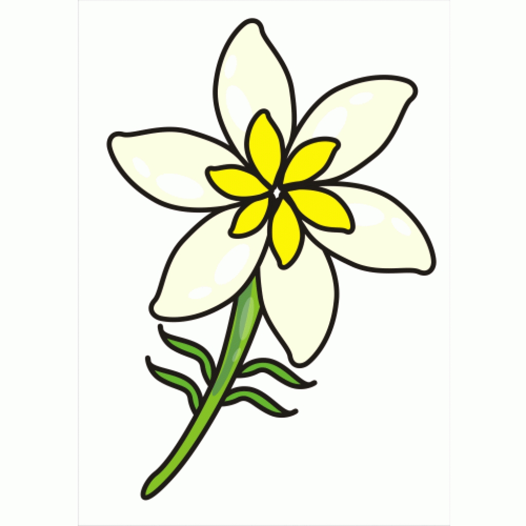 Jasmine Flower Clipart   Free download on ClipArtMag