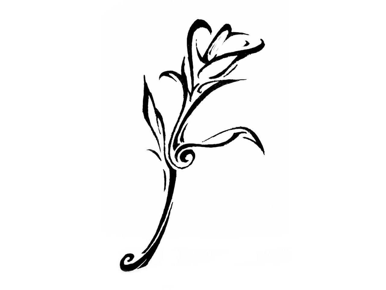 Jasmine Flower Tattoo Images Flowers Healthy