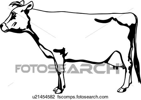450x319 Clipart Of , Cow, Jersey, Animal, U21454582