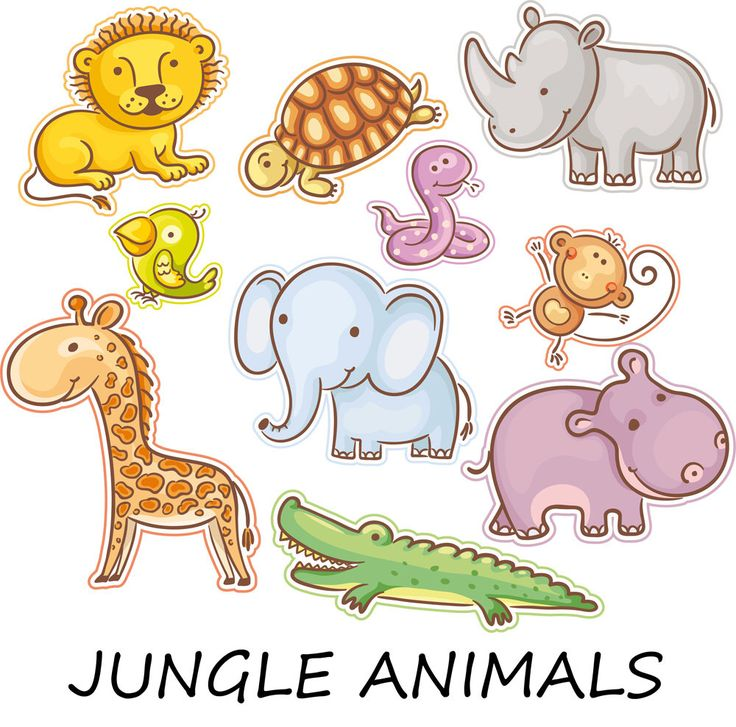 736x727 Zoo Clipart Jungle Animal