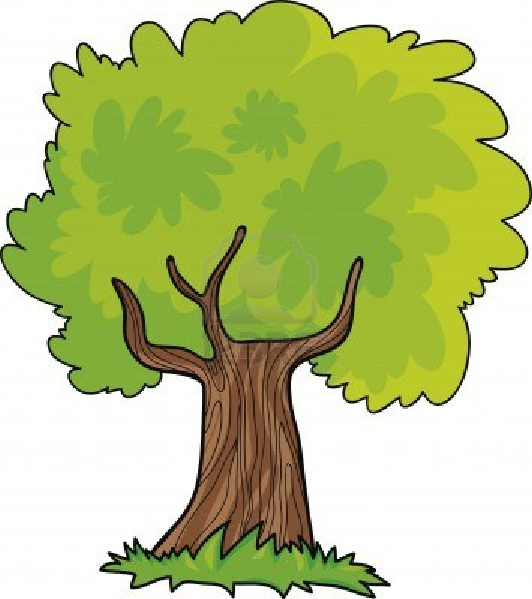 1065x1200 Jungle Tree Clipart Download