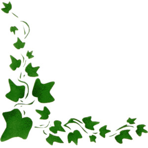 300x300 Jungle Clipart Ivy