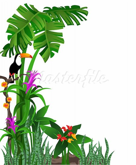 451x550 Fern Leaves Jpg Rainforest Border Clip Art (58.02 Kb) 451x550