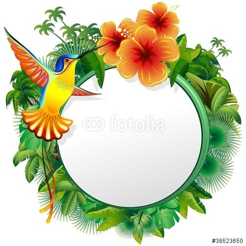 Jungle Border Clipart