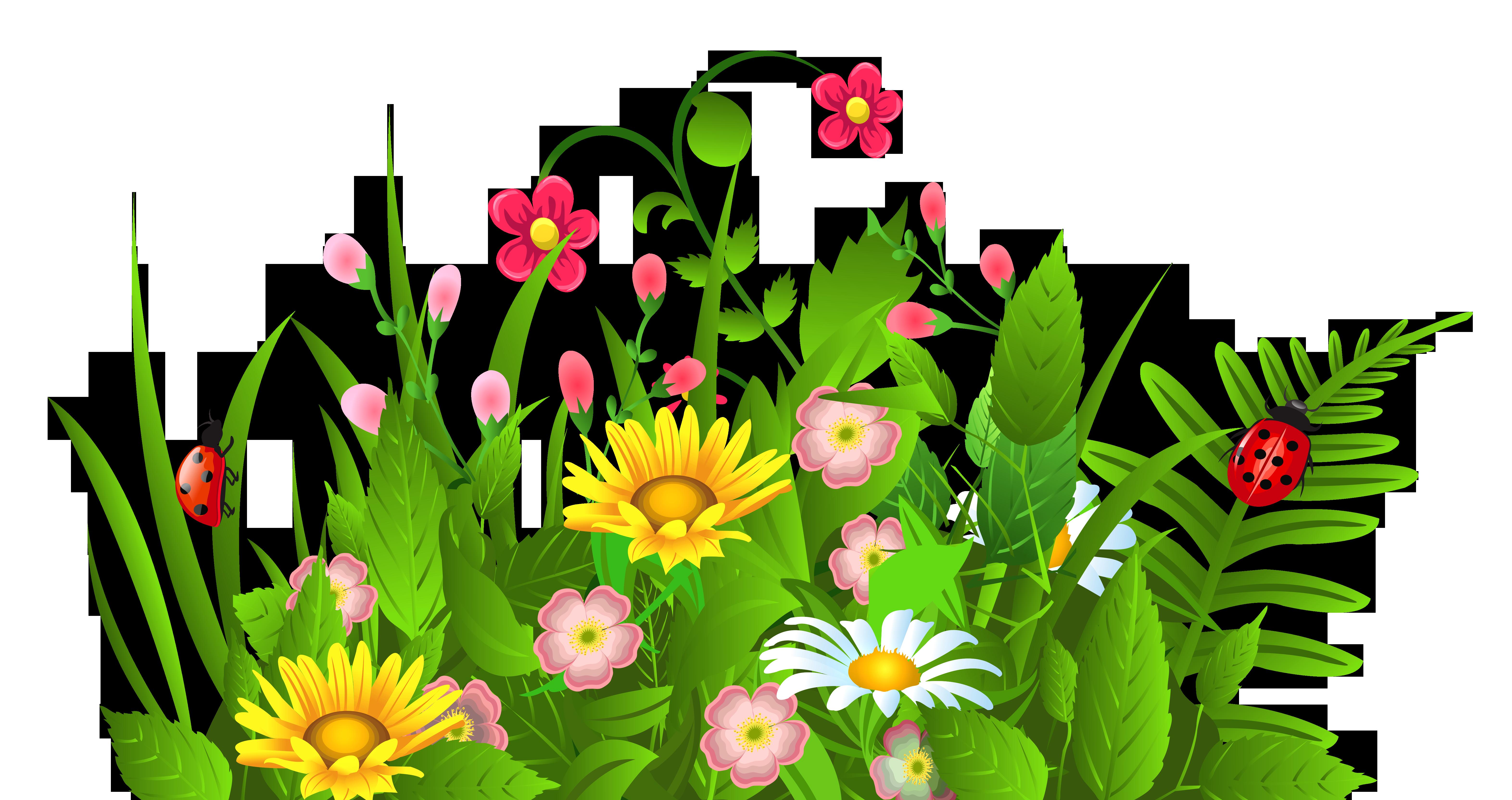 6287x3328 Jungle Flower Clipart