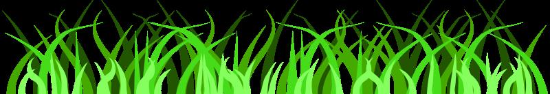 800x138 Jungle Grass Clipart