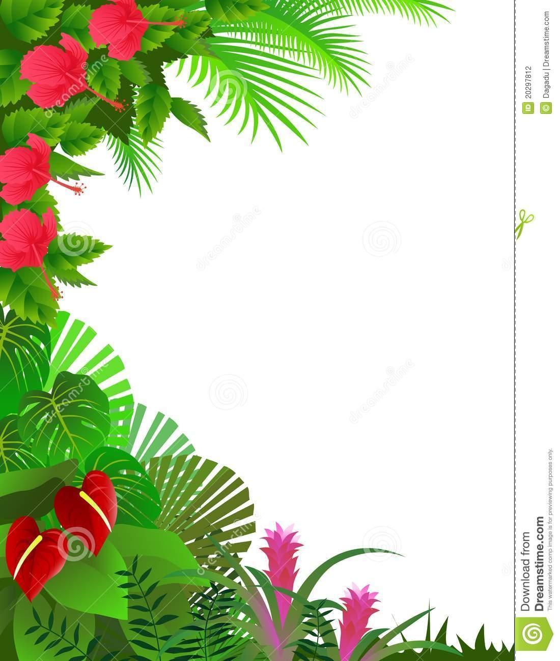1100x1300 Rainforest Background Clipart Border