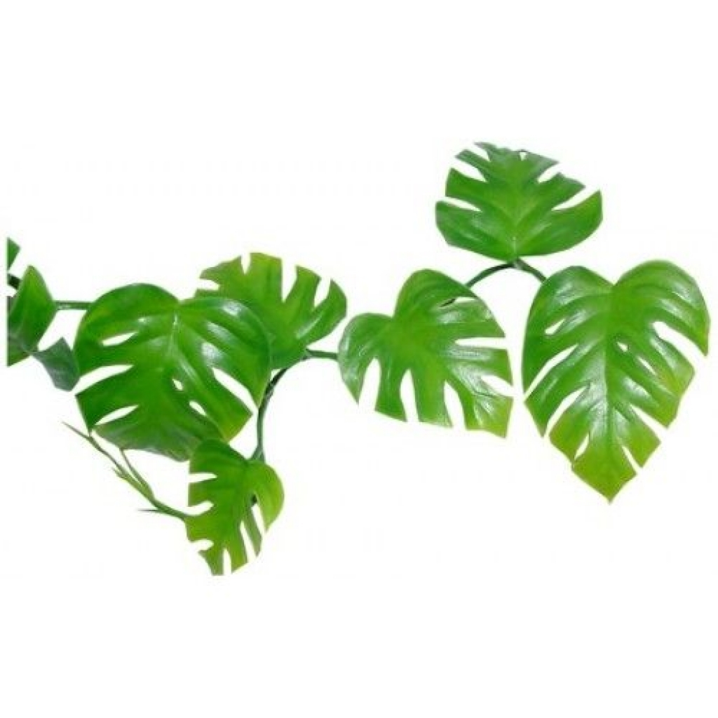 1024x1024 Jungle Flower Clip Art Jungle Leaves Clip Art Httpimgarcadebest