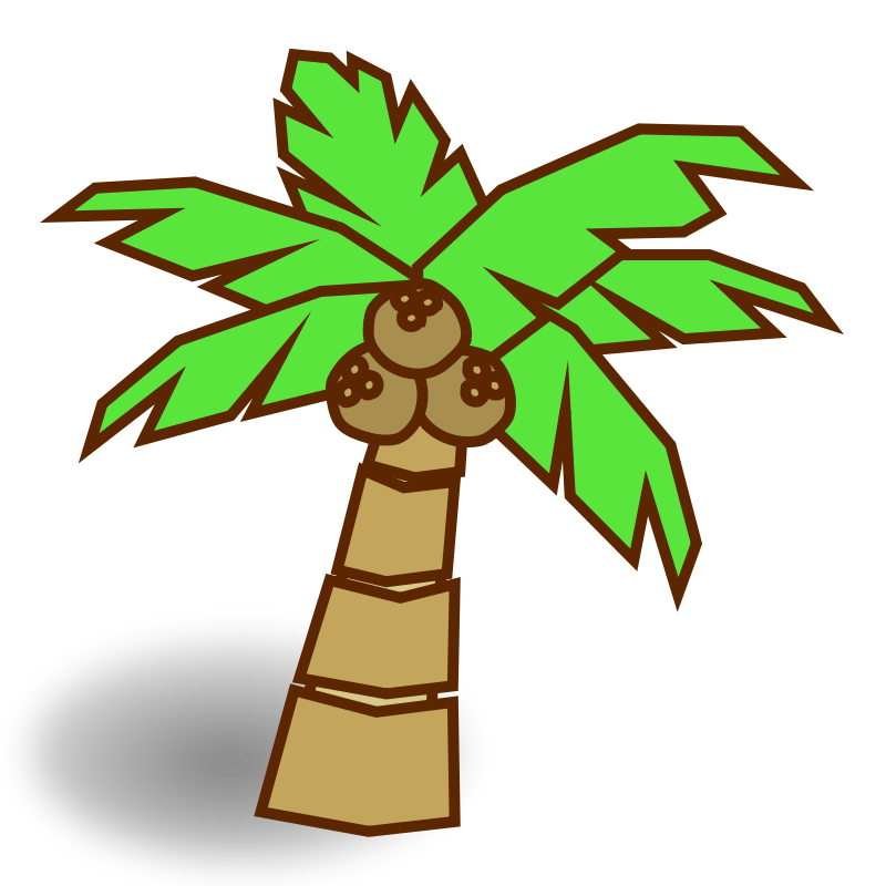 800x800 Cartoon Jungle Tree Clipart
