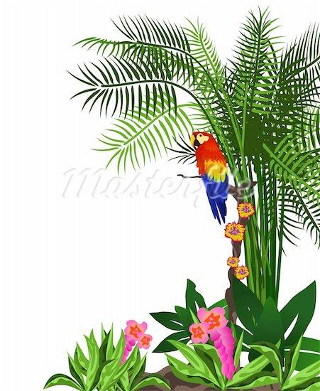 451x550 Tropics Clipart Jungle Tree