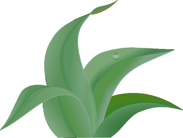 600x454 Leaves 2 Clip Art