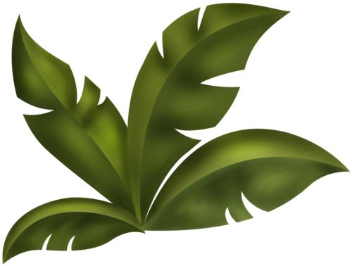 Jungle Leaves Clipart