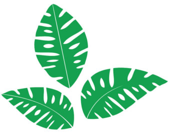 340x270 Leaf Clipart Jungle