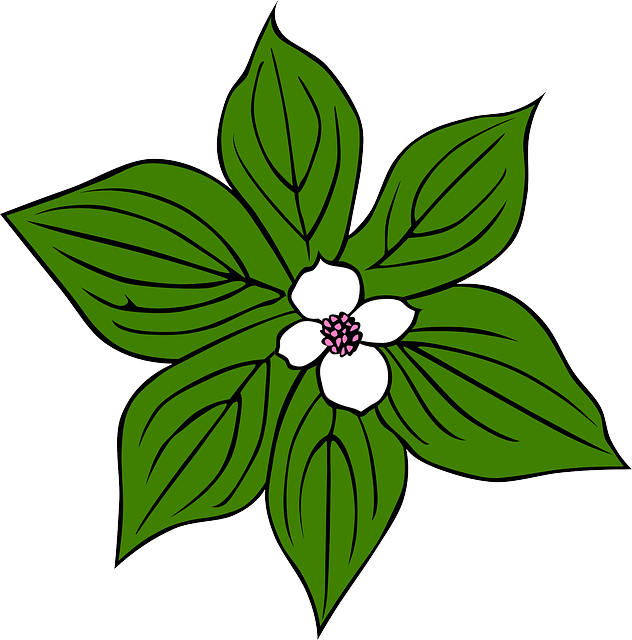 632x640 Flower Green Leaves Clip Art Cliparts