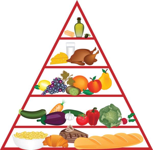 600x592 Top 92 Food Pyramid Clip Art