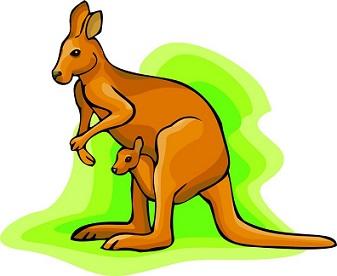 337x276 Free Kangaroo Clipart