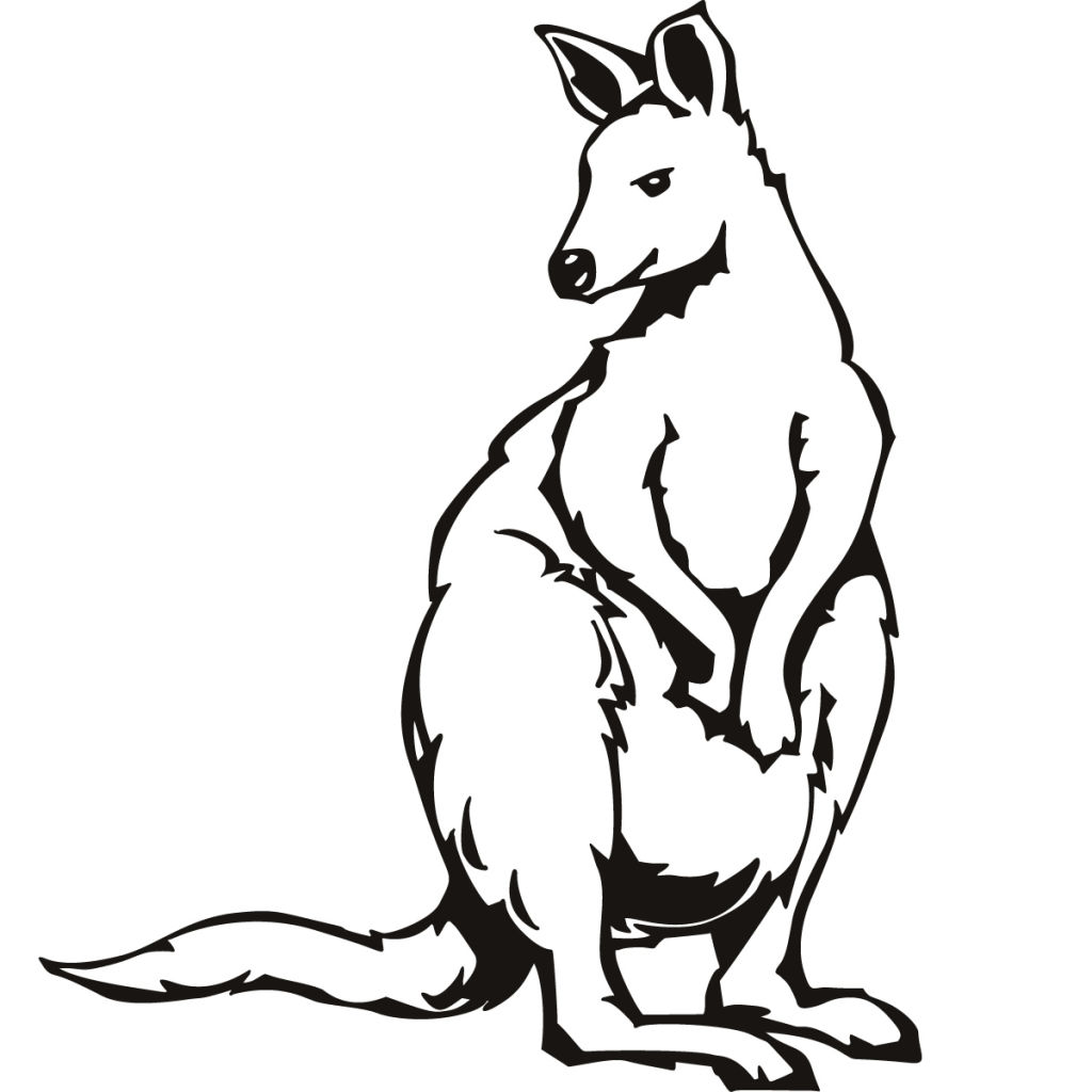 1024x1024 Coloring Pages Animals Page Free Printable Young Kangaroo