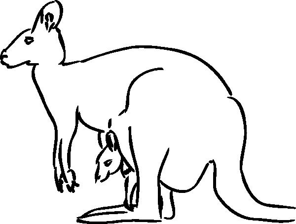 600x454 Kangaroo Outline Clip Art