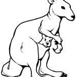 150x150 Kangaroo Plus Joey Outline Coloring Page