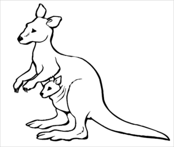 670x566 Awesome Idea Kangaroo Outline Of A Stock Photo Picture And Royalty